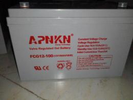 品克蓄電池FCG12-50 12V50AH風能發電專用