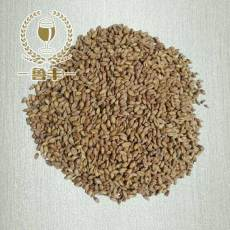 精釀自釀啤酒原料小麥芽釀酒小麥芽