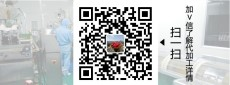 牛骨膠原蛋白肽粉加工  小分子肽固體飲料