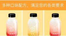 微商魔芋代餐奶昔貼牌定制 瓶裝奶昔飲加工