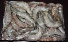 厄瓜多尔白虾进口报关代理青岛海鲜进口清关