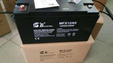 优特电源FM670免维护通用