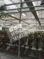 宿州香菇水果大棚管直销热线本地推荐