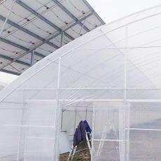 锦州香菇水果大棚管多少钱欢迎来电