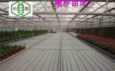 华耀优质潮汐灌溉式苗床加工北京潮汐苗床