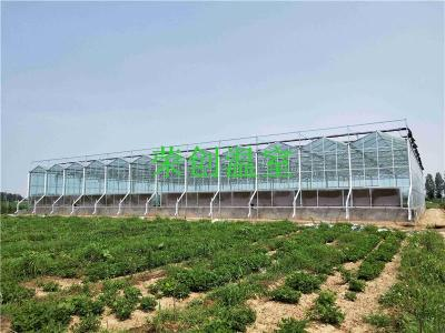 荣创温室 陕西PC阳光板温室大棚发展前景及