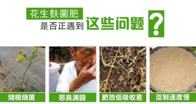 发酵花生麸做生物有机肥用的发酵剂是哪种