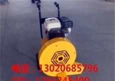 庆安价格 低廉厂家直销吹风机  BCF-55/90马路吹风机