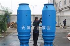 QZB立式套筒潜水轴流泵/现货供应潜水轴流泵