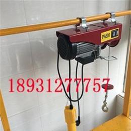PA300微型电动葫芦 220V微型电动葫芦 小吊机