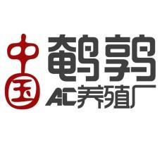 河南省安陽市鵪鶉苗多少錢一只