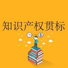 济南市知识产权管理体系认证的标准和奖励