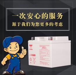 湯淺閥控式鉛酸蓄電池NP38-12 12V38AH/20HR