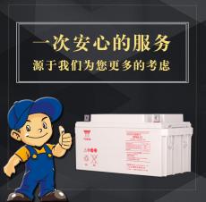 湯淺閥控式鉛酸蓄電池NP65-12 12V65AH/20HR
