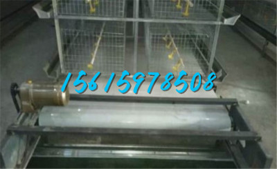 蛋鸡肉鸡养殖场传送带