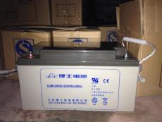 理士免維護蓄電池DJM1265 12V65AH電廠儲能
