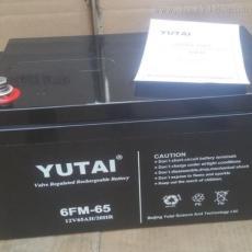 宇泰蓄電池6-FM-100 12V100AH廣東代理報價