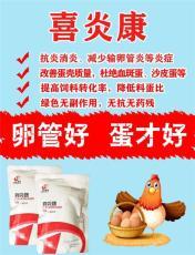 喜炎康無抗治療蛋禽種禽輸卵管炎的首選