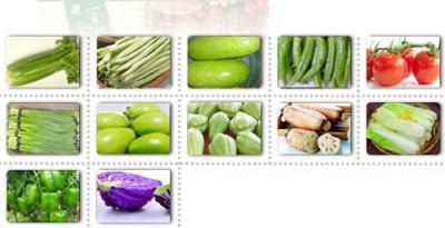 蒜黄批发洛阳无公害蔬菜集装箱销售蔬菜礼盒
