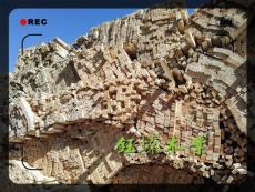 丹东辐射松木方加工厂家
