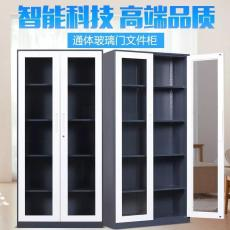 文件柜 双节文件柜 通体文件柜 平开文件柜