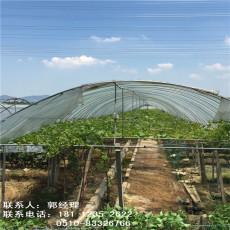 浙江湖州大棚鋼管溫室棚骨架價格表