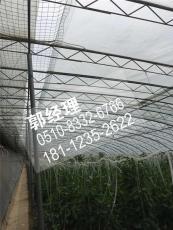 山西陽泉葡萄大棚管蔬菜大棚安裝建設