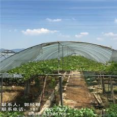 湖南湘潭鍍鋅帶鋼管大棚管廠家全國發貨
