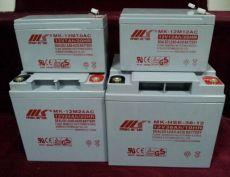 美國MK蓄電池8A8D免維護通用