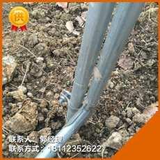 青海海北热镀锌钢管草莓大棚管厂家直销