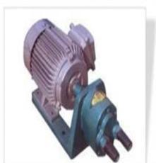2012最爆 雙聯泵 雙聯泵行情 雙聯泵廠家 雙聯泵批發