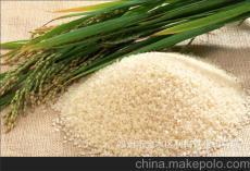 采購大量優質大米碎米糯米稻谷