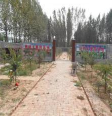 重慶省墊江縣黃沙鄉牧羊犬養殖技術幼犬價格