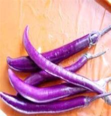 新鲜无公害蔬菜山茄 不同于一般的茄子哦