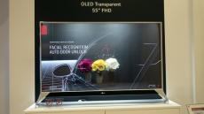 LG原裝OLED觸摸透明屏 自發光OLED顯示屏