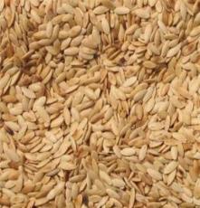 养生熟食杂粮批发熟蔬菜籽黄瓜籽 低温烘焙熟黄瓜籽 养生补钙佳品