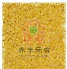 元農雜糧 :赤峰黃金苗小米 小黃苗 黃金谷