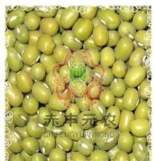元农杂粮 :赤峰绿豆 青小豆 东北农家自产有机绿豆