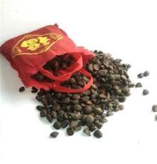 大量批发云南野生特级大瓣子山茶籽(1000吨)颗颗饱满、粒粒野生