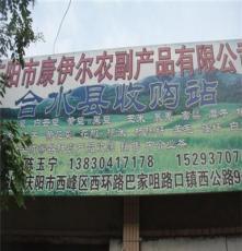 优质供应菜籽!菜籽批发 菜籽价格 详情面议 要货请致电联系