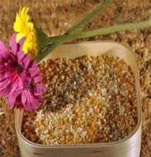 低溫烘焙五谷雜糧-熟糯米 適合于五谷磨坊粉料養生食品固元膏原料