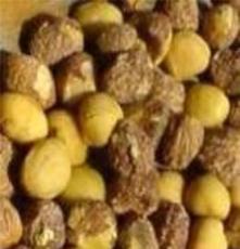供應油茶籽仁 山茶籽仁 高品質 廠家低價直銷