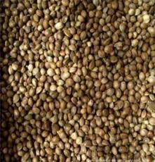 巴馬特產 純天然綠色食品 火麻仁/長壽健康食品