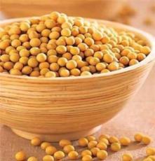 熟黃豆 烘焙黃豆 低溫烘焙五谷雜糧 批發 低溫烘焙 五谷養生材料