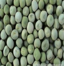 大量供應新優質國產青(綠)豌豆種子(中豌5號、中豌6號)