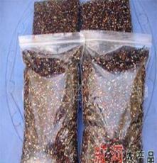越南芽胚紫米
