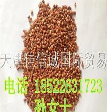 澳粱  酿酒原料 澳粱 容重780以上 饲料原料