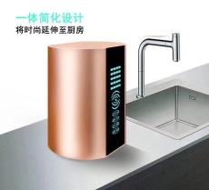 75G加仑纯水机RO家用厨下式纯水机自动反渗