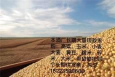 酒厂现款求购玉米200吨