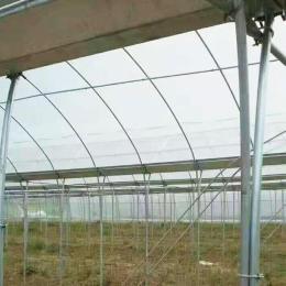 新鄉大棚管蔬菜大棚鋼管銷售廠家